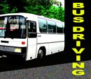 Bus Driving Experience!