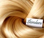 Shirodhara Unisex Hair Spa 1