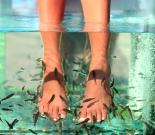 20΄ Fish Spa pedicure for 1!