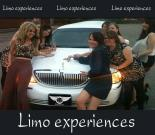 Presidential limo fun for up to 8 persons - 2 hours